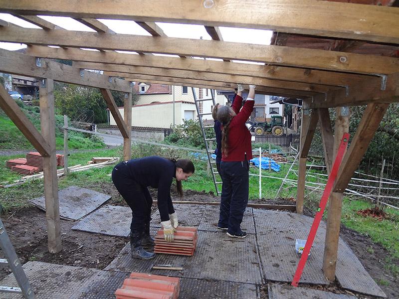 Eselunterstand bauen