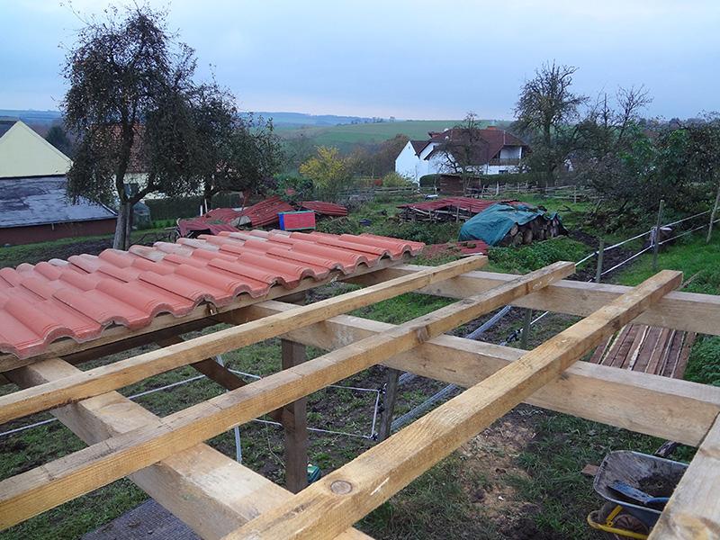 Eselunterstand wird gebaut